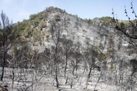 El incendio de Morna, que calcinó 1.443 hectáreas forestales en Ibiza, cumple cinco años