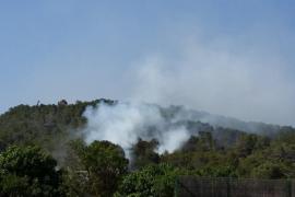 Controlado el incendio forestal de Sant Josep