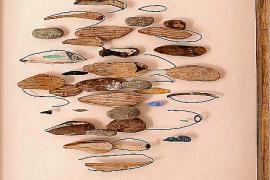 Los peces como protagonistas en la exposición 'Son de Mar'