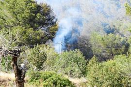 Un incendio forestal obliga a desalojar tres viviendas en Sant Josep