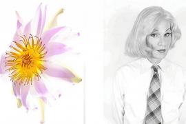 'Andy Dandy', un homenaje a Warhol
