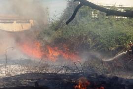 Alerta en Vila por un incendio que fue controlado a las puertas de la central eléctrica
