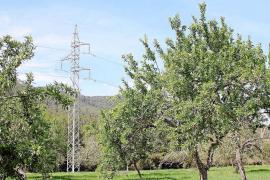Red Eléctrica defiende su proyecto de alta tensión para evitar cortes de luz en toda la isla