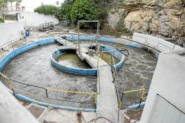 Empresarios y turistas de Cala Vedella se quejan del «insoportable» olor de la depuradora
