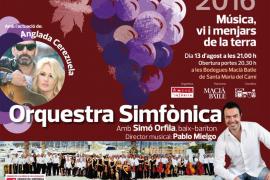 Concert de la Lluna a les Vinyes 2016