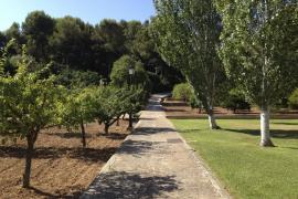 Los jardines de Marivent estarán abiertos al público a principios de 2017