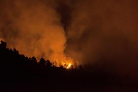 Muere un agente forestal mientras trabajaba en la extinción del incendio de La Palma