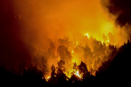 Un fuego en La Palma obliga a evacuar a los vecinos de Montes de Luna y Tigalate