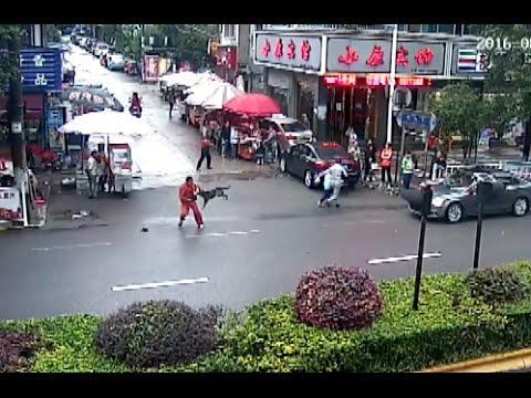 Un perro enfurecido ataca a 23 personas y causa el pánico en China