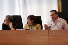 Tarrés anuncia que el PTE no saldrá adelante sin un mayor consenso