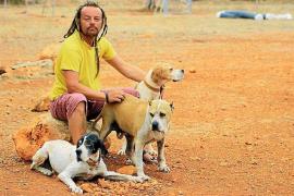 El veterinario del Consell certificó que los perros de Ibiza4patas no están en malas condiciones