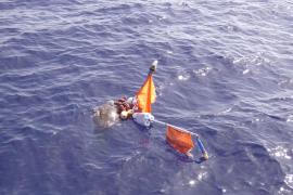 Rescatan y liberan a una tortuga boba atrapada en un palangre de pesca