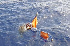 Unos navegantes ibicencos rescatan a una tortuga atrapada en un palangre