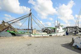 Pimef celebra la ubicación de la estación marítima en Vila