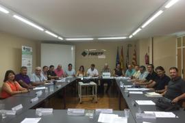 La Pimeef pide que la línea de alta tensión sea soterrada y discurra por la carretera entre Vila y Sant Antoni