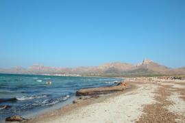 El Govern pide a la Unión Europea fondos para un sistema de gestión sostenible de playas