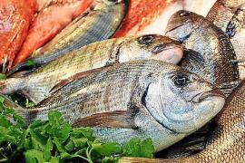 Revelan la presencia de microplásticos en los peces capturados en las Pitiusas