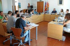 Formentera reclama al Govern más medidas contra la procesionaria del pino
