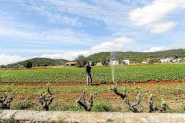 El PP critica que Vidal «haya engañado» al sector primario con las ayudas de la sequía
