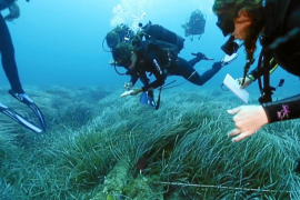Conservar nuestros tesoros marinos