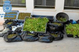 Desmantelado un laboratorio de drogas en un golpe policial con dos detenidos en Ibiza
