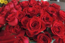 Convocada en Ferraz 'La revolución de las rosas'