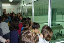 Alumnes del CEIP Port de Pollença visitaren Grup Serra i Agromallorca