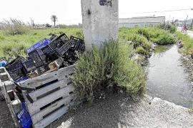 El Consell se compromete a limpiar los canales de ses Feixes este invierno