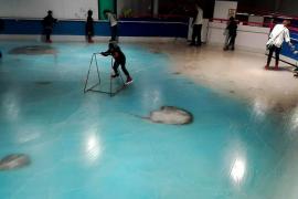 Polémica en Japón por una pista de hielo con 5.000 peces congelados