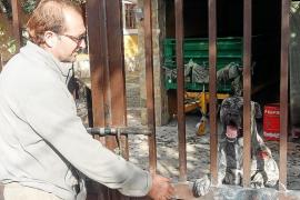 Un perro resulta herido por una cuchillada en el asalto a una finca de es Fornàs