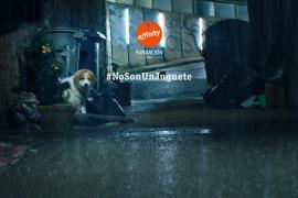 La Fundación Affinity avisa que los animales #NoSonUnJuguete