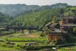 Descubren una sopa cocinada en China hace más de 2.000 años