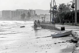El temporal de viento y lluvia sacude el litoral de las Pitiusas y arranca varios árboles en Ibiza