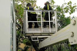 Los bomberos reclaman doblar la plantilla para «evitar el caos sufrido por el temporal»