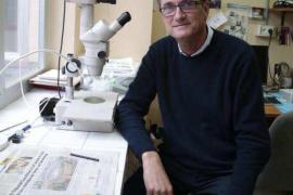 «En Balears hay unas 120 plantas comestibles que no se conocen»