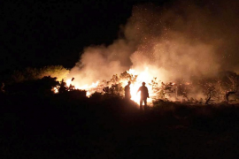 Formentera reclama al Govern medidas urgentes para proteger s'Espalmador