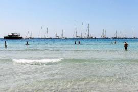 El Consell encargará un estudio sobre la masificación de los fondeos en Ibiza