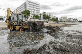 Vila pondrá en marcha un servicio mínimo de limpieza de playas antes de Semana Santa
