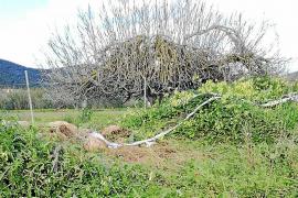 Conmoción en Sant Josep por la muerte de un joven vecino en accidente de tráfico