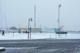 Estampa de postal en el puerto de Dénia tras la fuerte nevada