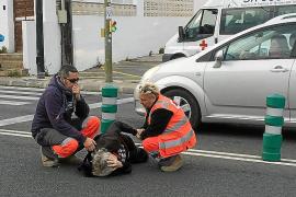 Herida de gravedad una mujer atropellada por una moto en la avenida Sant Josep de Vila