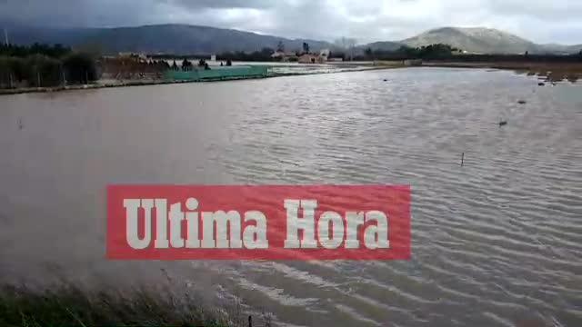 El Govern estudia crear una línea de ayudas directa tras el temporal