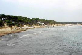 Vicent Marí: «Es vergonzoso que se utilice la ecotasa para salvar a Abaqua»