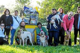 CEPA Pitiusas dona 150 euros a Ibiza 4 patas