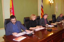 Vidal pide evitar polémicas sobre la 'xylella' que puedan dañar la imagen turística de Baleares