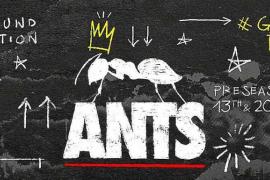 Ants anuncia dos fechas de pretemporada, 13 y 20 de mayo