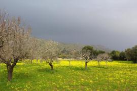 Cielos nubosos y lluvias débiles para este miércoles en Baleares