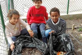 Los más pequeños de Formentera aprenden la receta mágica del compostaje