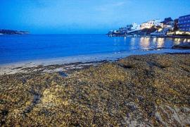 Vila estudia adelantar los servicios mínimos en la playa de Talamanca