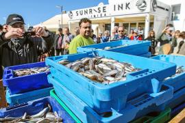 Las cofradías de pescadores ofrecen precios populares para promocionar el 'gerret'